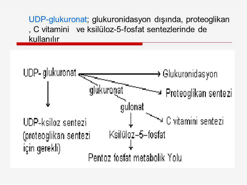 UDP-glukuronat; glukuronidasyon dışında, proteoglikan , C vitamini ve ksilüloz-5-fosfat sentezlerinde de kullanılır