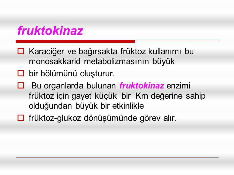 fruktokinaz Karaciğer ve bağırsakta früktoz kullanımı bu monosakkarid metabolizmasının büyük. bir bölümünü oluşturur.