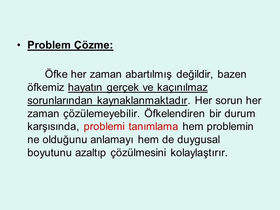 Problem Çözme: