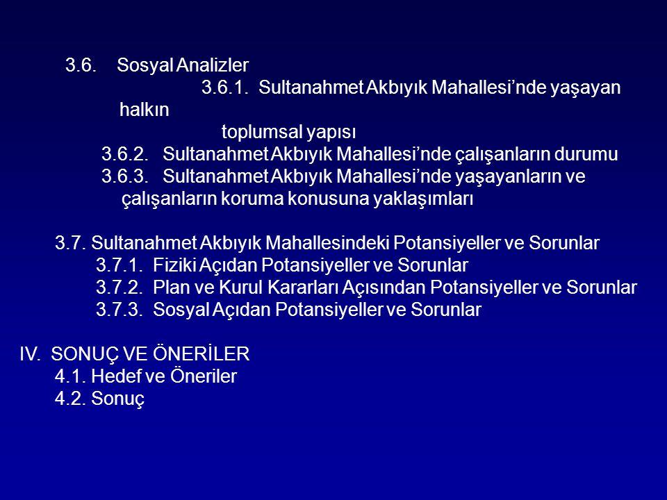 3.6. Sosyal Analizler 3.6.1. Sultanahmet Akbıyık Mahallesi'nde yaşayan halkın. toplumsal yapısı.