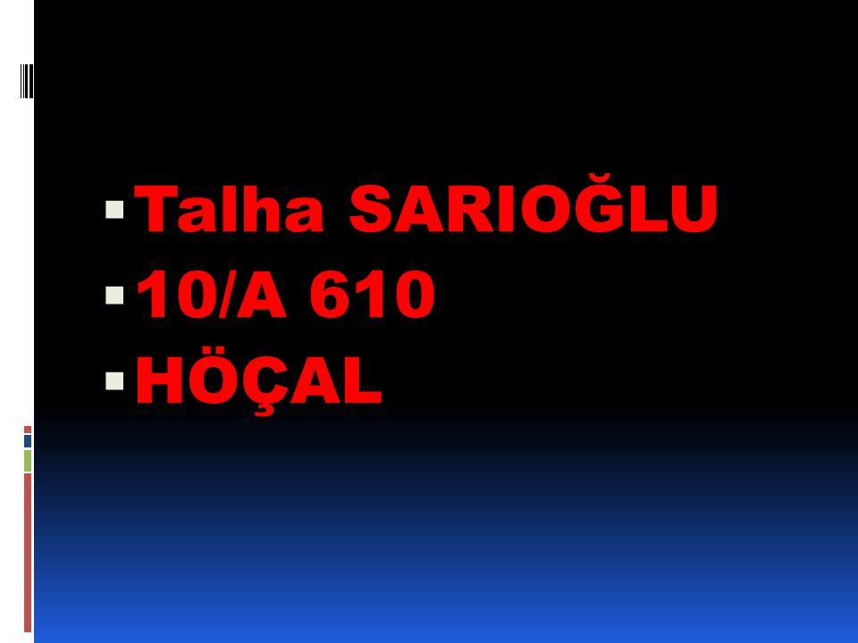 Talha SARIOĞLU 10/A 610 HÖÇAL