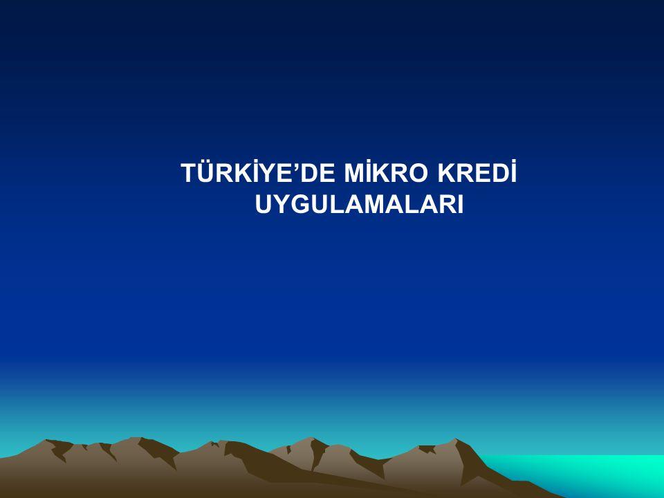 TÜRKİYE'DE MİKRO KREDİ UYGULAMALARI