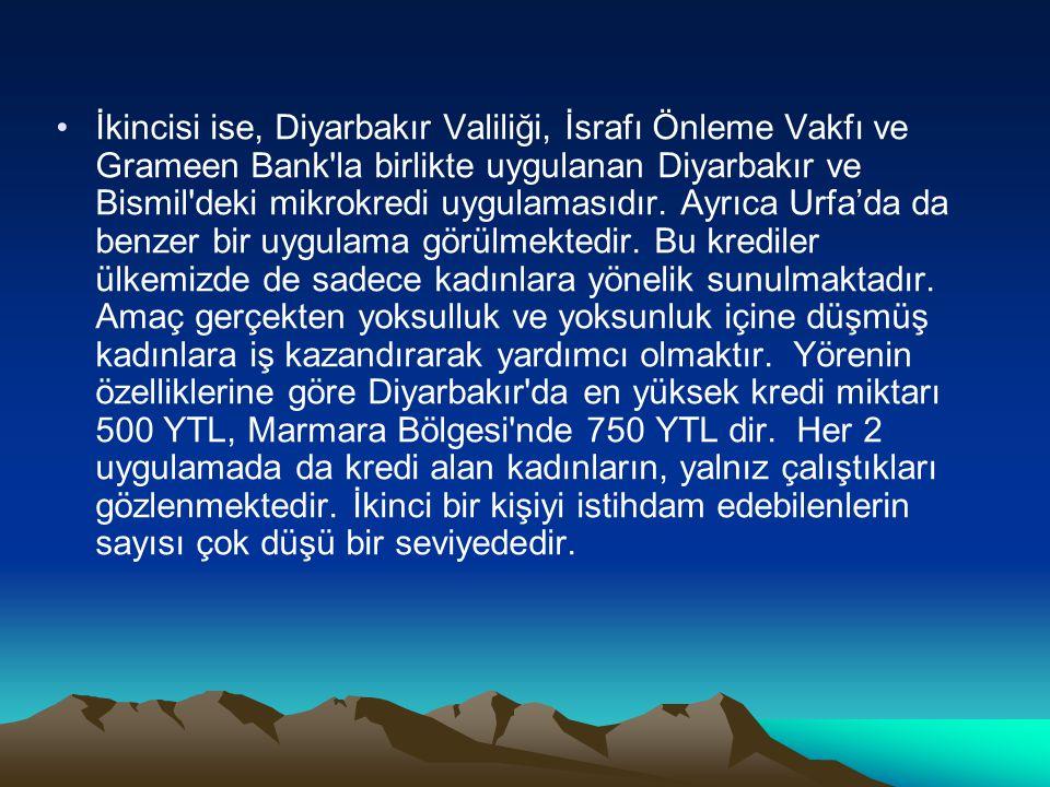 İkincisi ise, Diyarbakır Valiliği, İsrafı Önleme Vakfı ve Grameen Bank la birlikte uygulanan Diyarbakır ve Bismil deki mikrokredi uygulamasıdır.