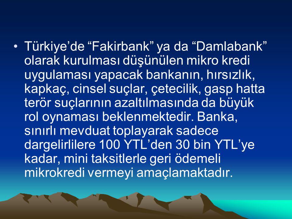 Türkiye'de Fakirbank ya da Damlabank olarak kurulması düşünülen mikro kredi uygulaması yapacak bankanın, hırsızlık, kapkaç, cinsel suçlar, çetecilik, gasp hatta terör suçlarının azaltılmasında da büyük rol oynaması beklenmektedir.