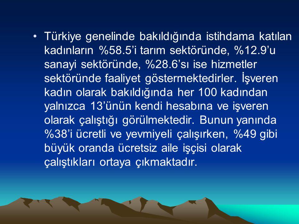 Türkiye genelinde bakıldığında istihdama katılan kadınların %58