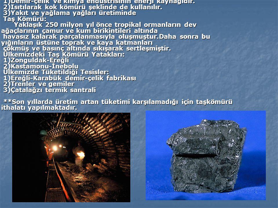 TAŞ KÖMÜRÜ: Çıkarılan en eski kömürdür