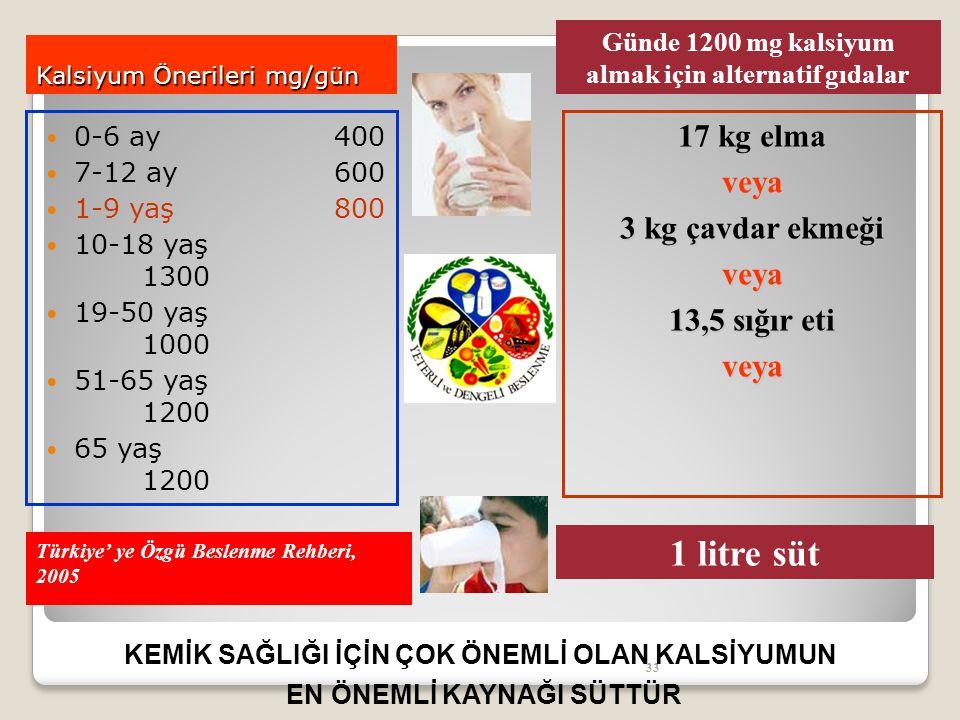 Kalsiyum Önerileri mg/gün