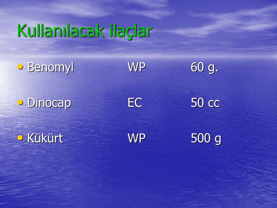 Kullanılacak ilaçlar Benomyl WP 60 g. Dinocap EC 50 cc Kükürt WP 500 g