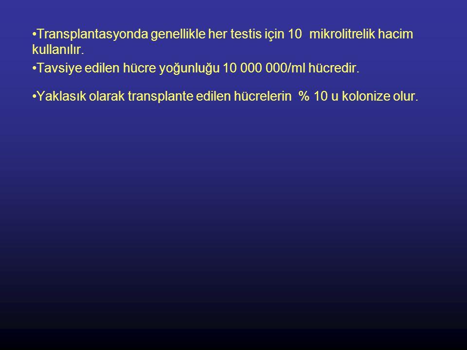 Transplantasyonda genellikle her testis için 10 mikrolitrelik hacim kullanılır.