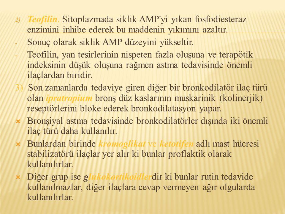 Teofilin. Sitoplazmada siklik AMP yi yıkan fosfodiesteraz enzimini inhibe ederek bu maddenin yıkımını azaltır.