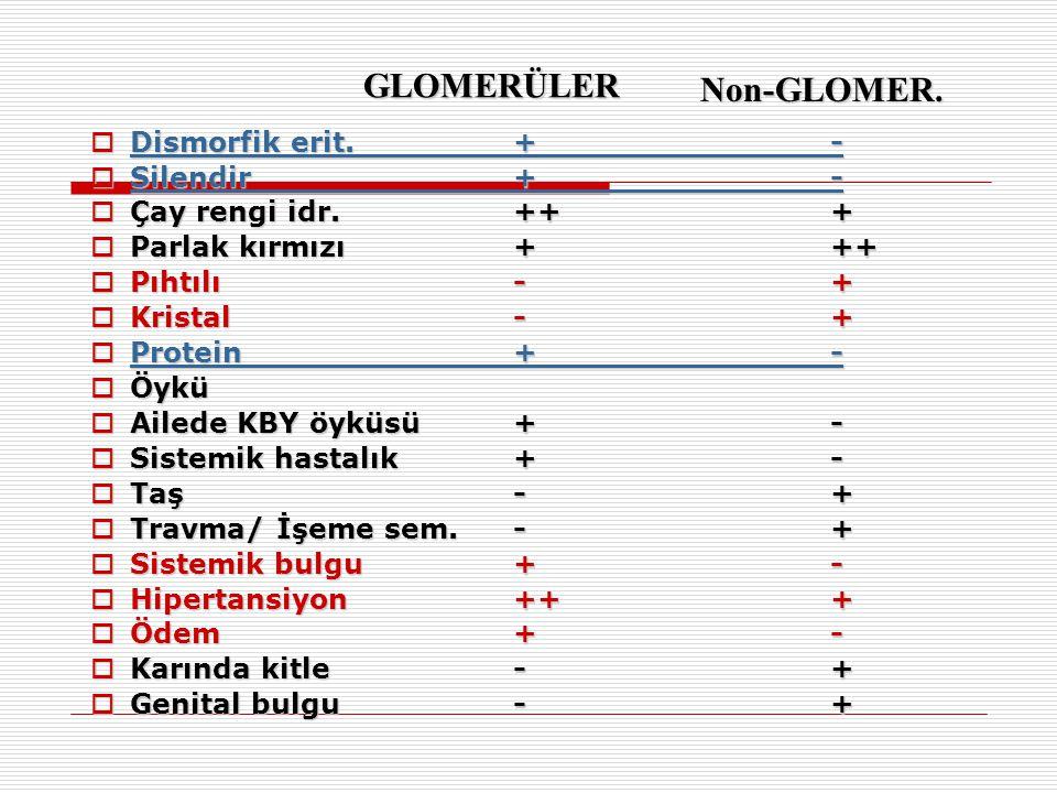 GLOMERÜLER Non-GLOMER. Dismorfik erit. + - Silendir + -