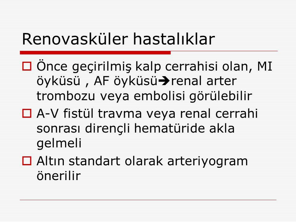 Renovasküler hastalıklar