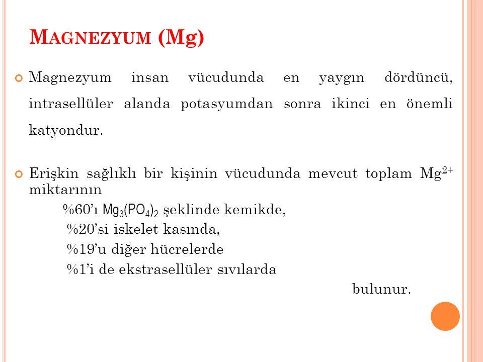 Magnezyum (Mg) Magnezyum insan vücudunda en yaygın dördüncü, intrasellüler alanda potasyumdan sonra ikinci en önemli katyondur.