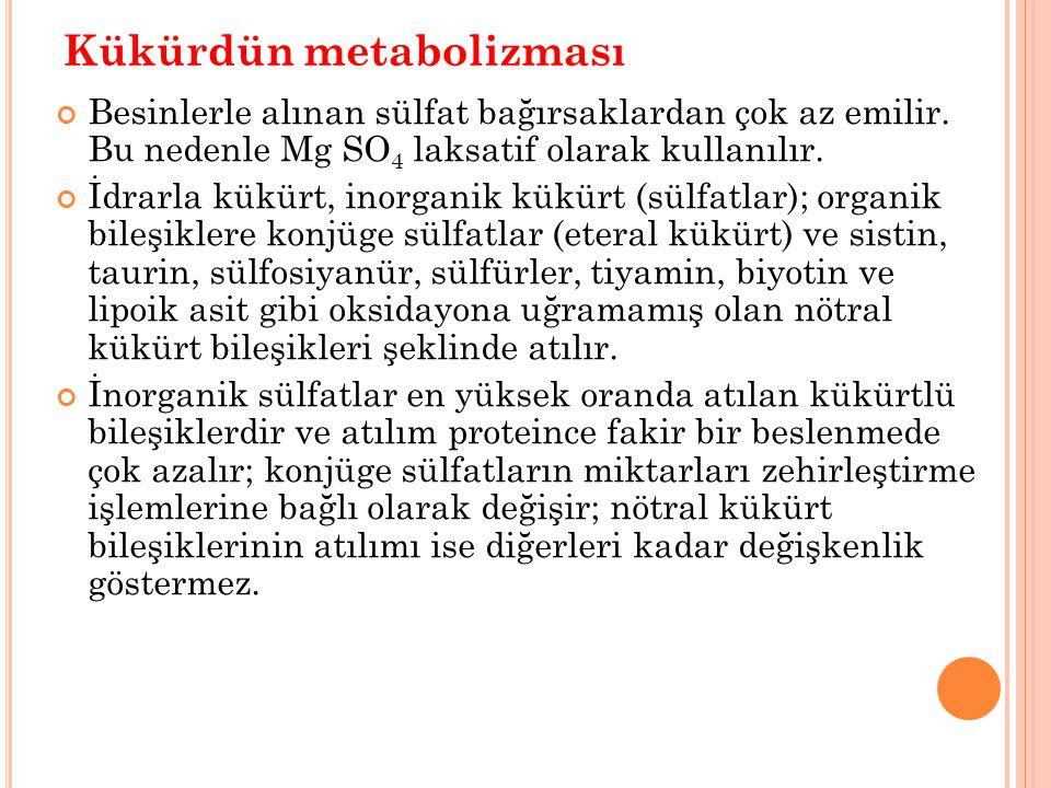 Kükürdün metabolizması
