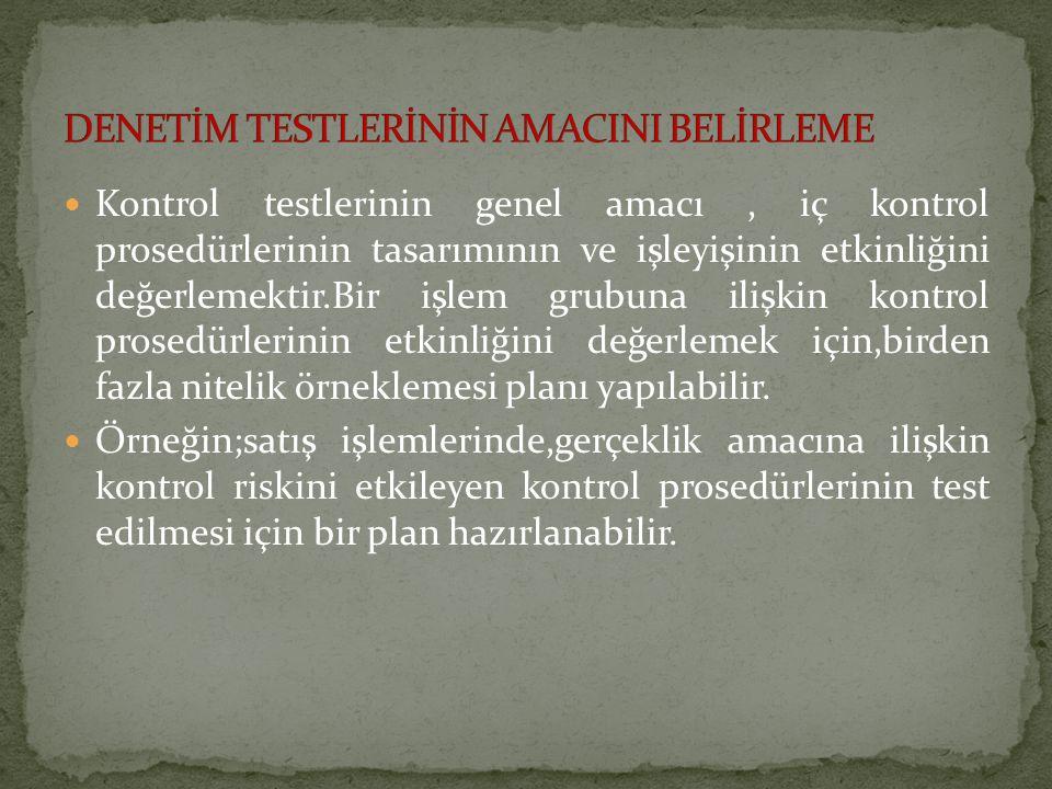 DENETİM TESTLERİNİN AMACINI BELİRLEME