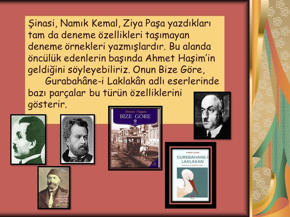 Şinasi, Namık Kemal, Ziya Paşa yazdıkları tam da deneme özellikleri taşımayan deneme örnekleri yazmışlardır. Bu alanda öncülük edenlerin başında Ahmet Haşim'in geldiğini söyleyebiliriz. Onun Bize Göre,