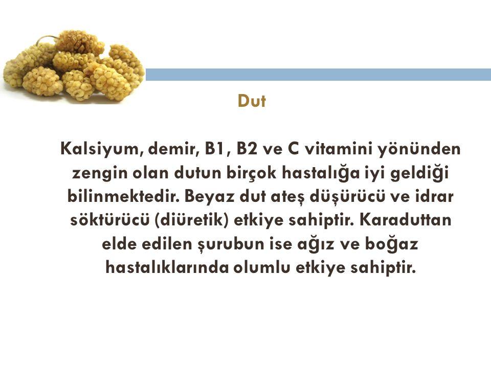 Dut Kalsiyum, demir, B1, B2 ve C vitamini yönünden zengin olan dutun birçok hastalığa iyi geldiği bilinmektedir.