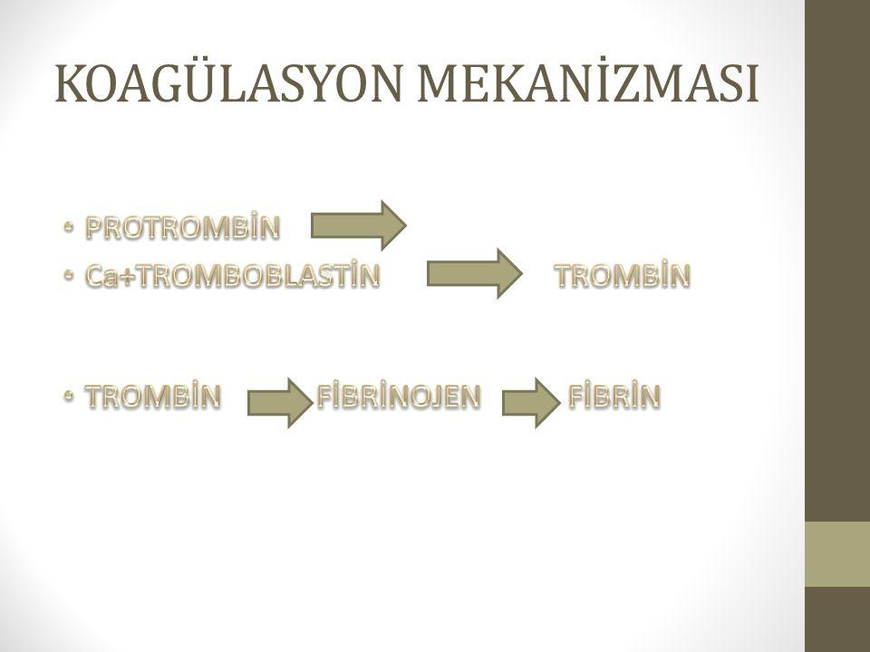 KOAGÜLASYON MEKANİZMASI