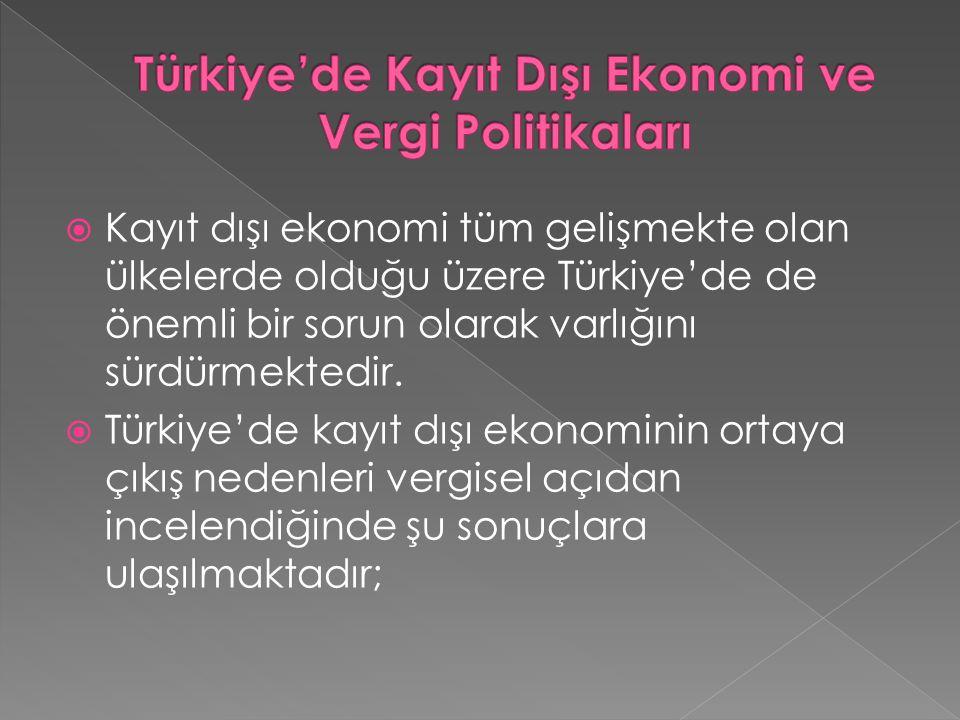 Türkiye'de Kayıt Dışı Ekonomi ve Vergi Politikaları