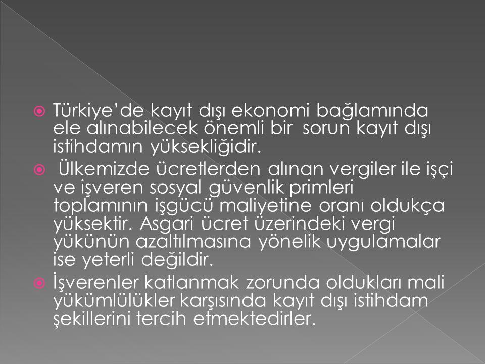 Türkiye'de kayıt dışı ekonomi bağlamında ele alınabilecek önemli bir sorun kayıt dışı istihdamın yüksekliğidir.