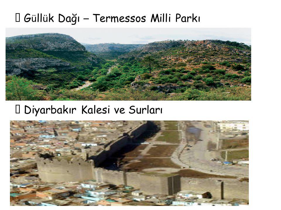  Güllük Dağı – Termessos Milli Parkı