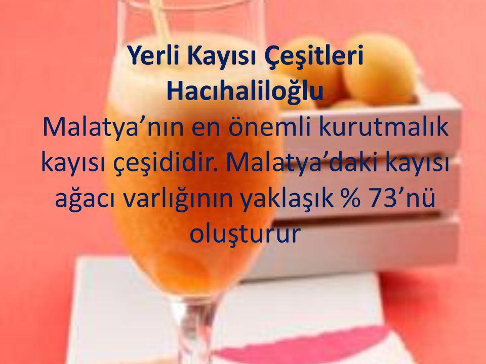 Yerli Kayısı Çeşitleri Hacıhaliloğlu Malatya'nın en önemli kurutmalık kayısı çeşididir.