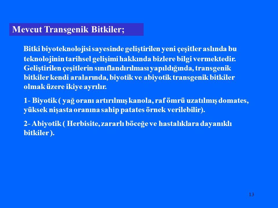 Mevcut Transgenik Bitkiler;