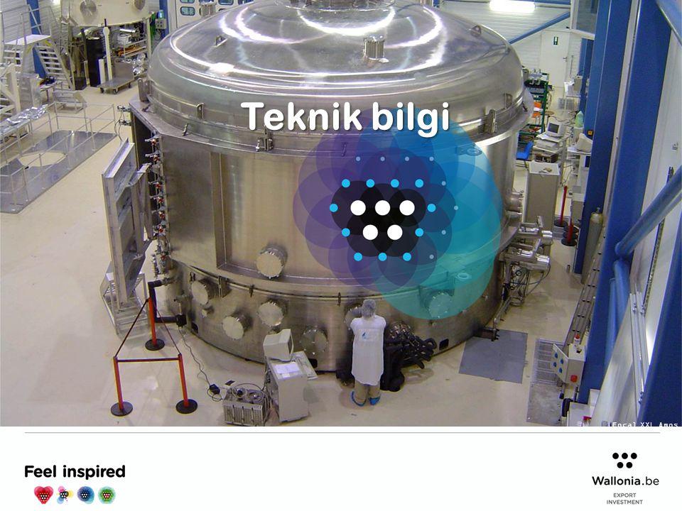 Teknik bilgi Focal XXL Amos