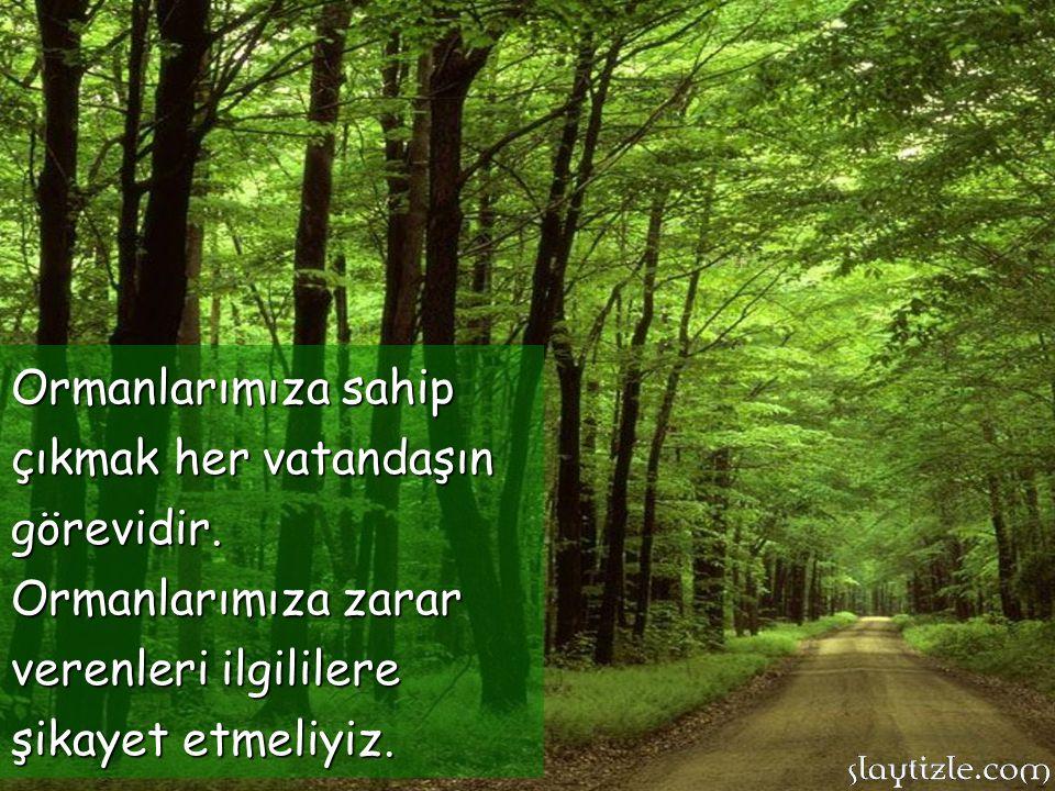 Ormanlarımıza sahip çıkmak her vatandaşın görevidir.