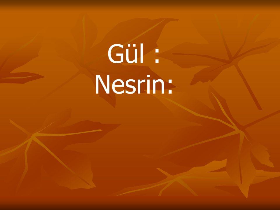 Gül : Nesrin: