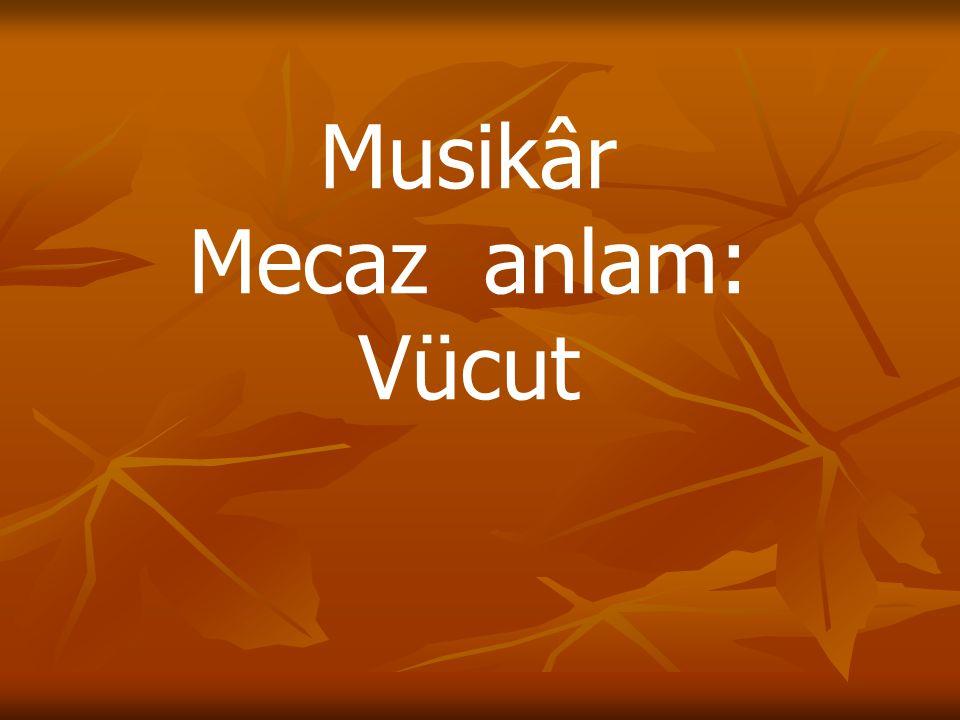 Musikâr Mecaz anlam: Vücut
