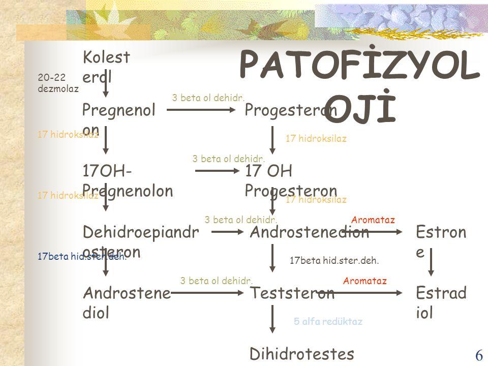 PATOFİZYOLOJİ Kolesterol Pregnenolon Progesteron 17OH-Pregnenolon