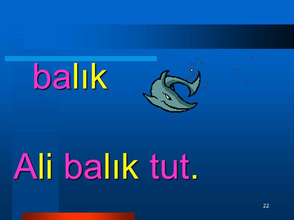 balık Ali balık tut.
