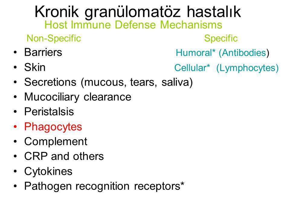 Kronik granülomatöz hastalık