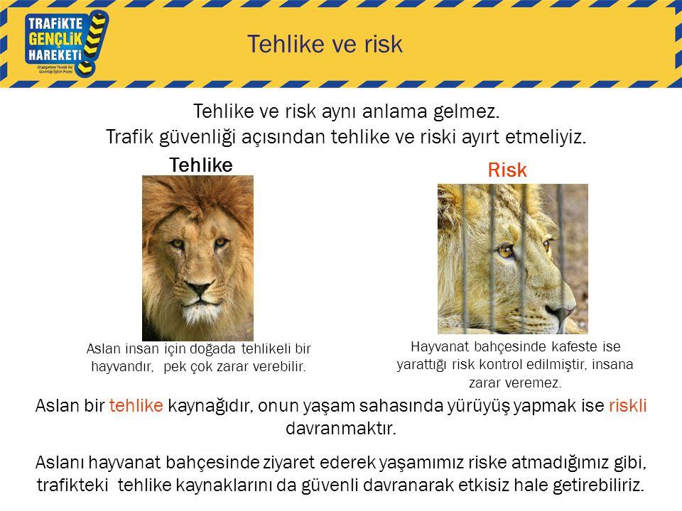 Tehlike ve risk