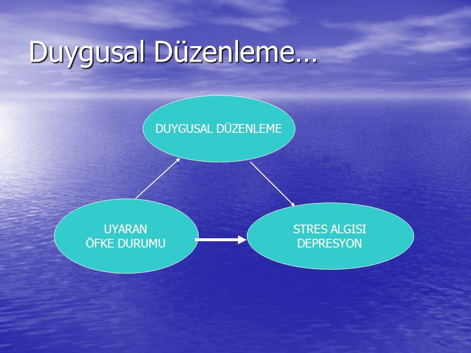 Duygusal Düzenleme… DUYGUSAL DÜZENLEME UYARAN STRES ALGISI ÖFKE DURUMU