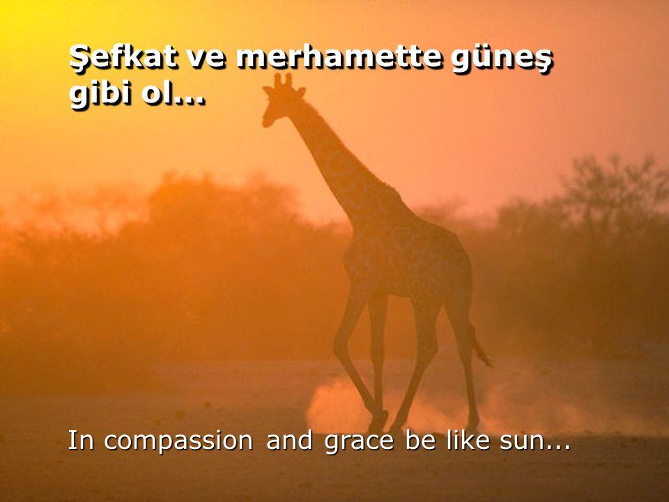 Şefkat ve merhamette güneş gibi ol...