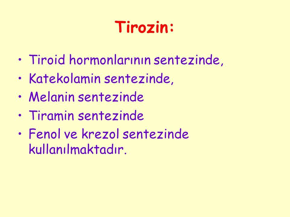 Tirozin: Tiroid hormonlarının sentezinde, Katekolamin sentezinde,