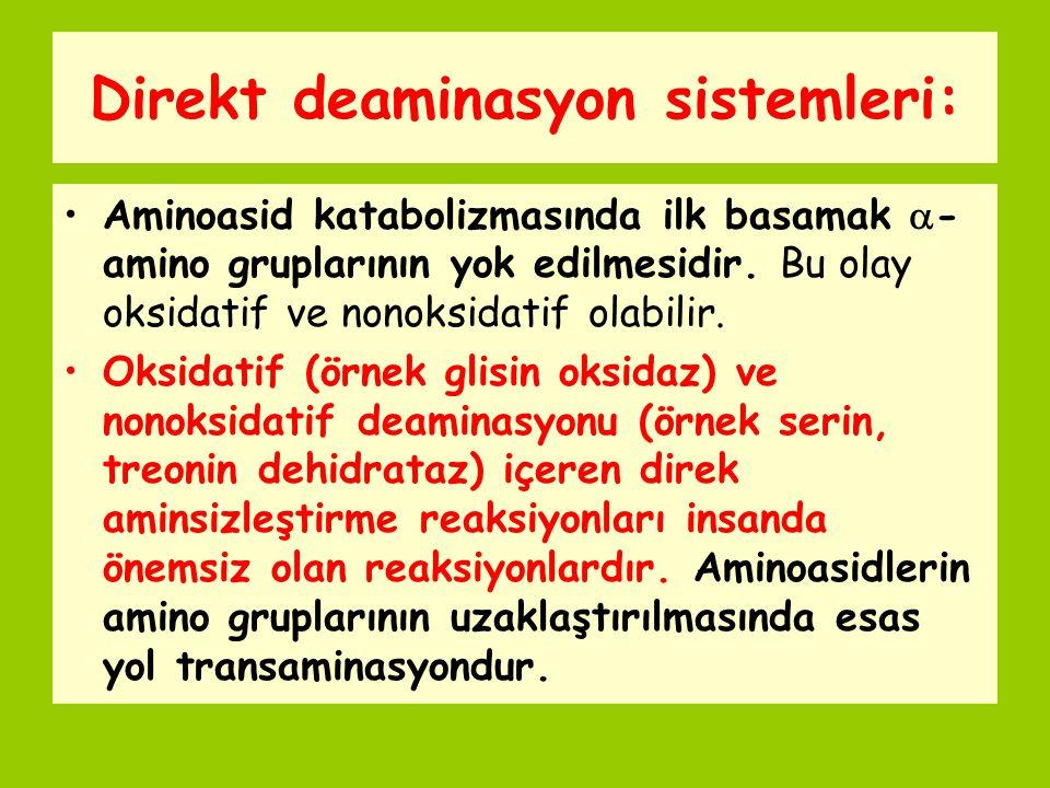 Direkt deaminasyon sistemleri: