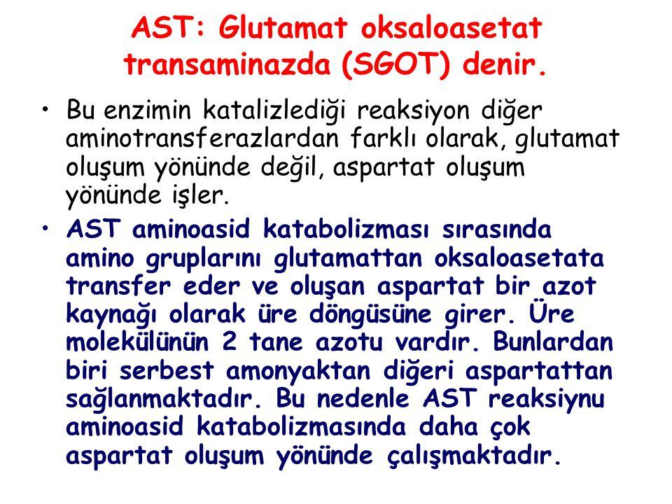 AST: Glutamat oksaloasetat transaminazda (SGOT) denir.