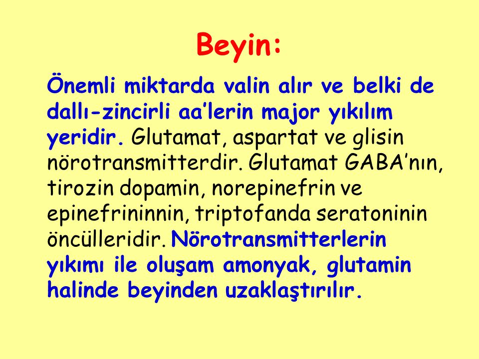 Beyin: