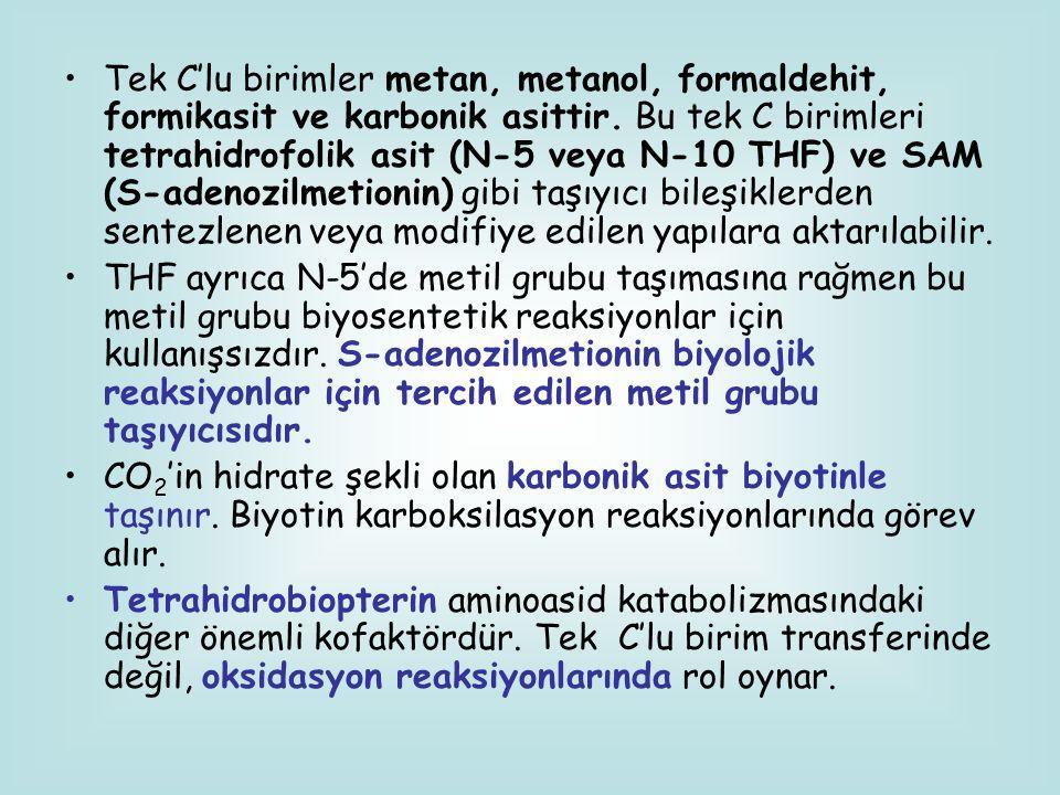 Tek C'lu birimler metan, metanol, formaldehit, formikasit ve karbonik asittir. Bu tek C birimleri tetrahidrofolik asit (N-5 veya N-10 THF) ve SAM (S-adenozilmetionin) gibi taşıyıcı bileşiklerden sentezlenen veya modifiye edilen yapılara aktarılabilir.