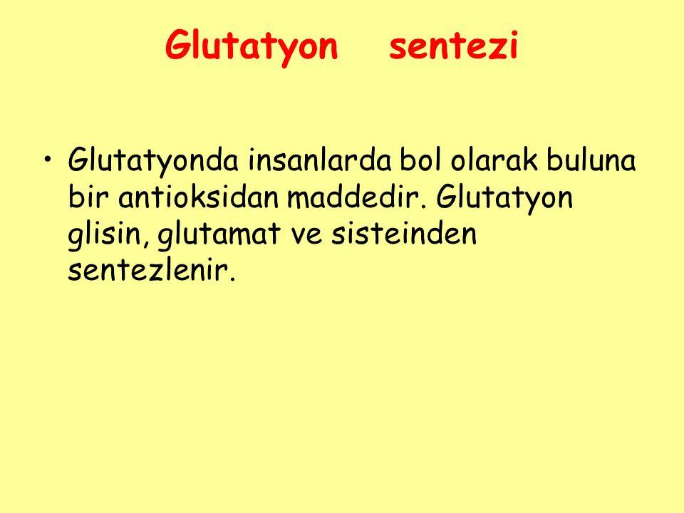 Glutatyon sentezi Glutatyonda insanlarda bol olarak buluna bir antioksidan maddedir.