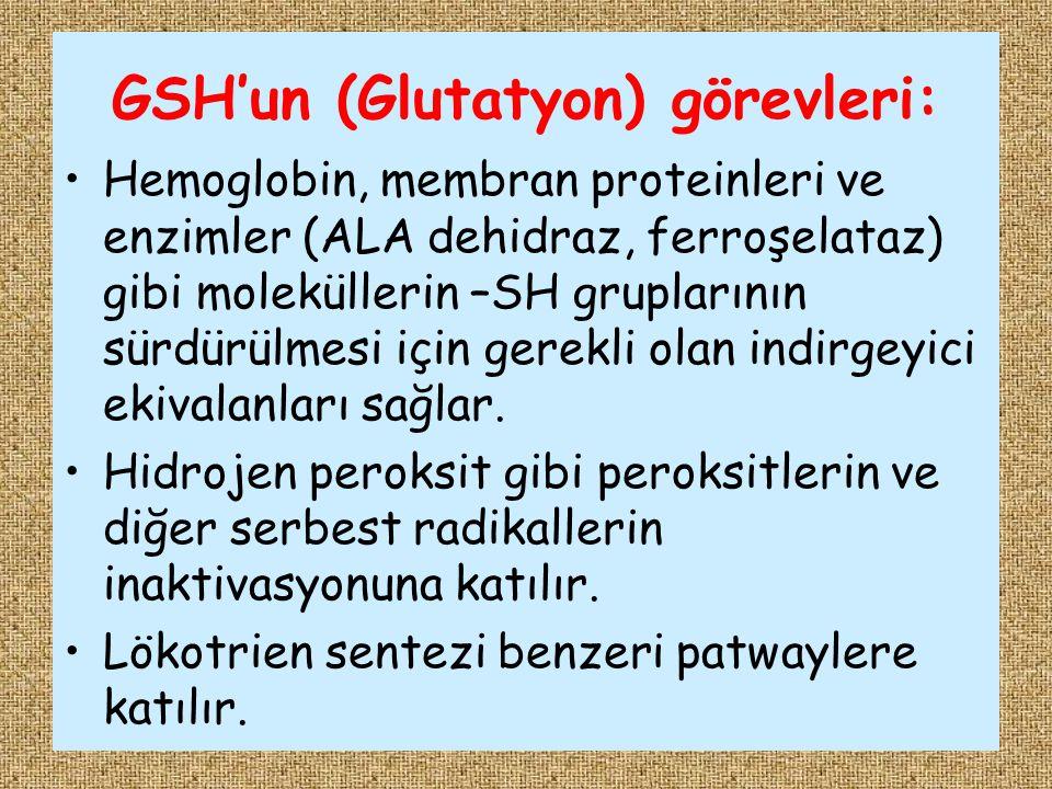 GSH'un (Glutatyon) görevleri: