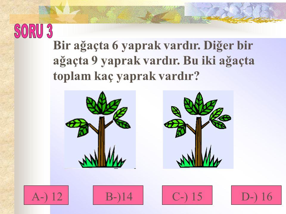 SORU 3 Bir ağaçta 6 yaprak vardır. Diğer bir ağaçta 9 yaprak vardır. Bu iki ağaçta toplam kaç yaprak vardır