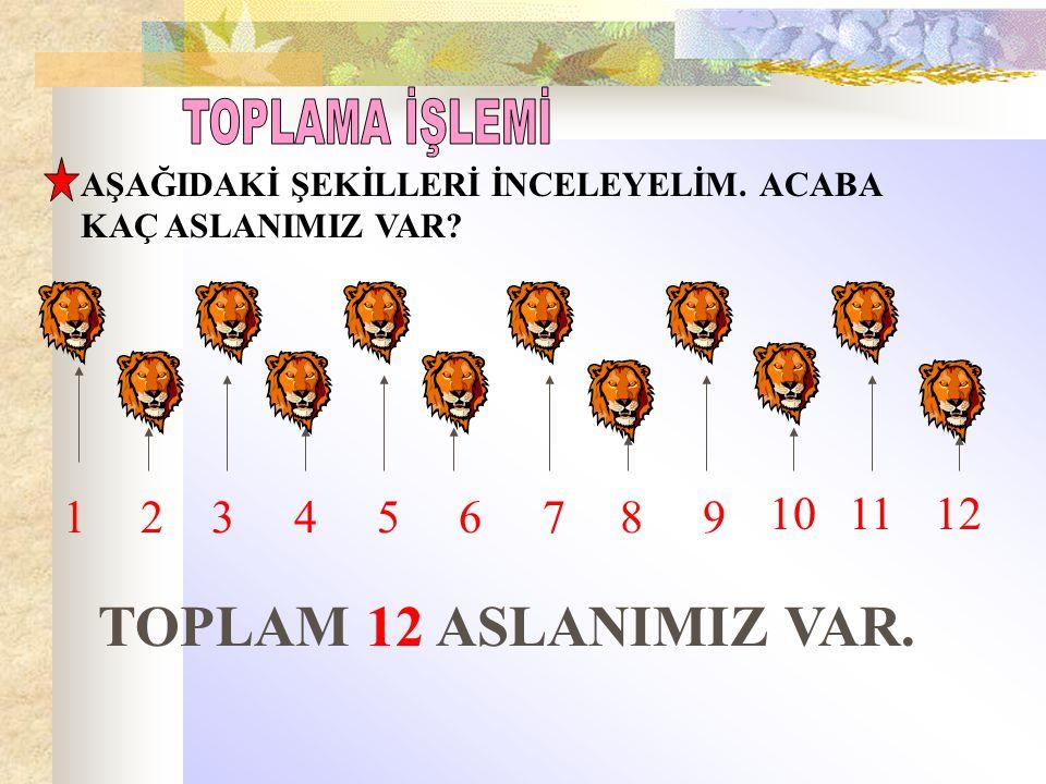 TOPLAM 12 ASLANIMIZ VAR. TOPLAMA İŞLEMİ 1 2 3 4 5 6 7 8 9 10 11 12