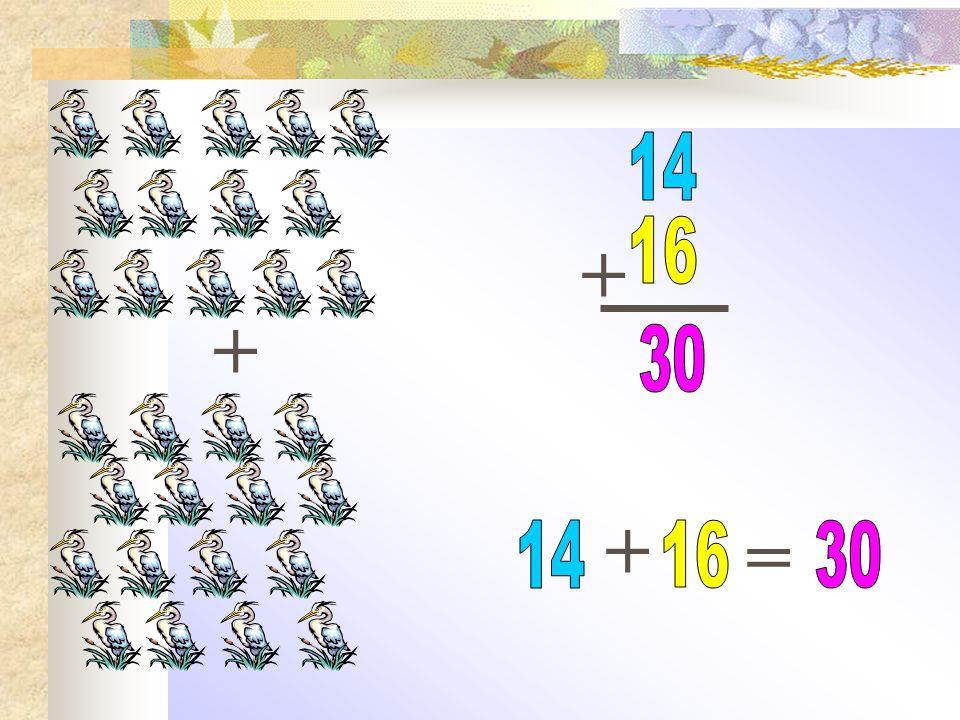 14 + 16 + 30 + = 14 16 30