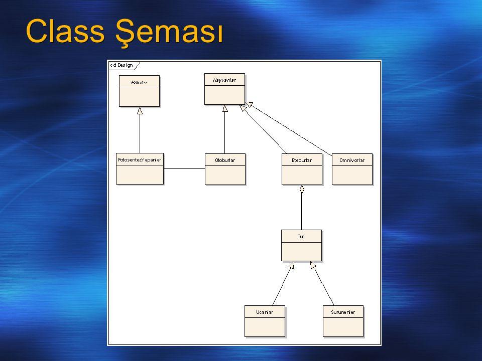 Class Şeması