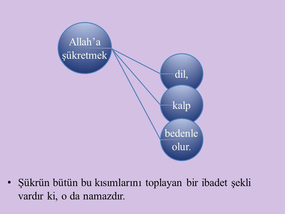 Allah'a şükretmek dil, kalp. bedenle olur.