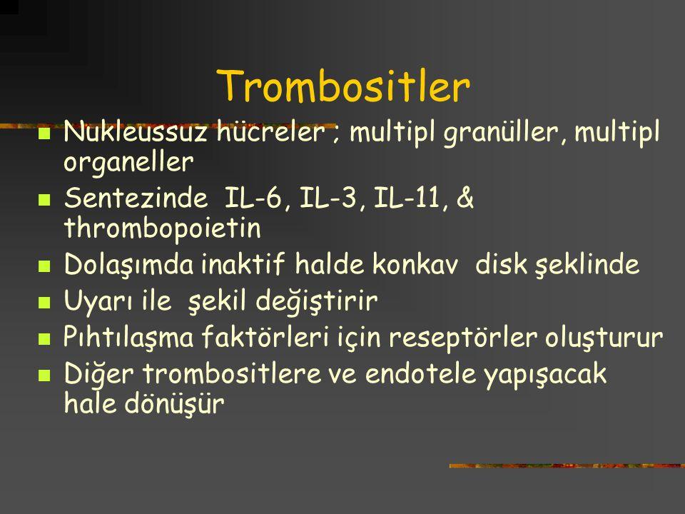 Trombositler Nukleussuz hücreler ; multipl granüller, multipl organeller. Sentezinde IL-6, IL-3, IL-11, & thrombopoietin.